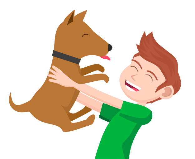 lavorare con gli animali