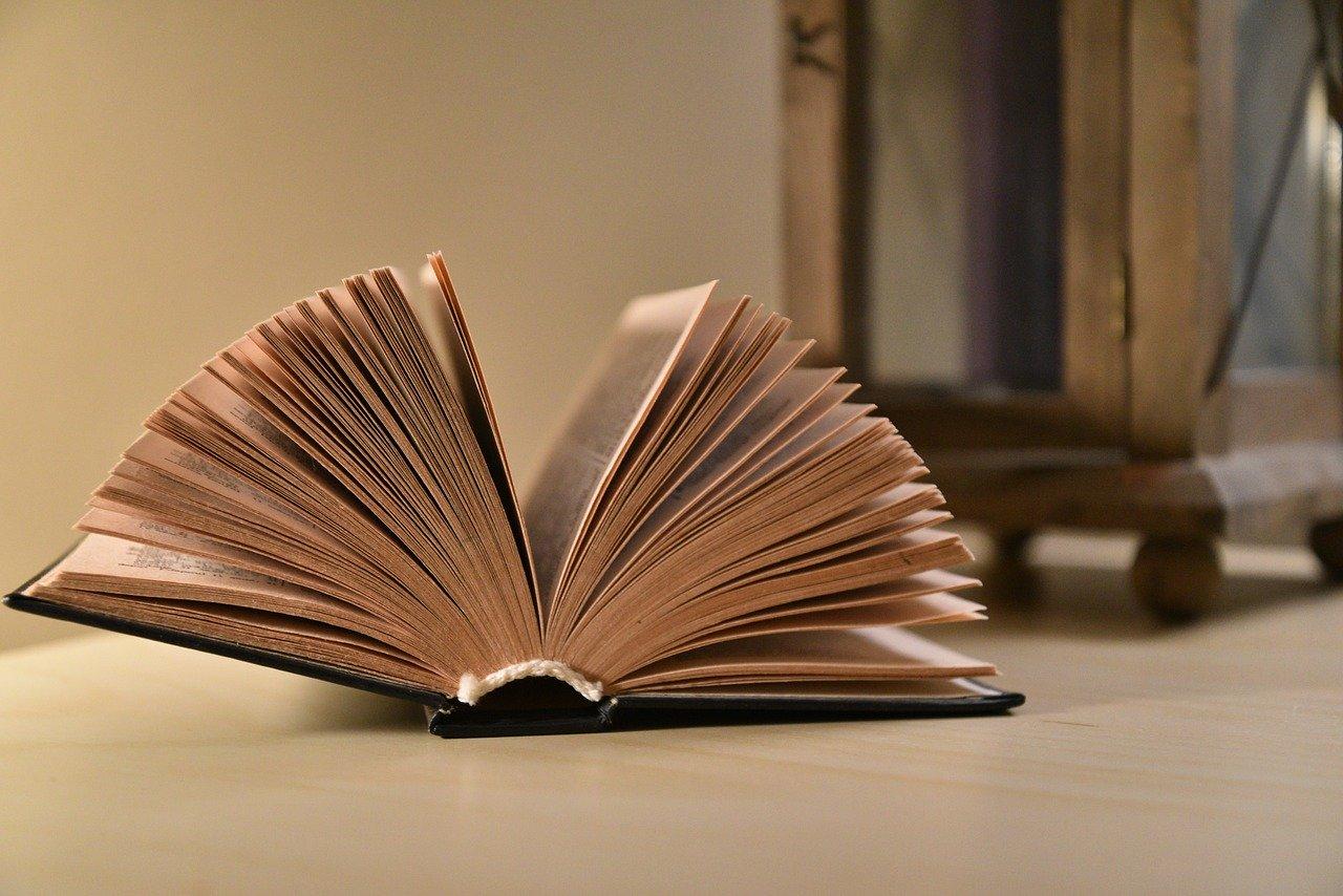 libri per freelance